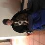 Senior Caregiver in Centurion, Gauteng, South Africa looking for a job: 2370718