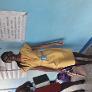Babysitter a Woodbrook, Port-of-Spain, Trinidad e Tobago in cerca di lavoro: 2588222