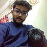 Pet Sitter in Delhi, Delhi, India looking for a job: 2746583