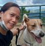 Huishoudster in kamp John Hay, Benguet, Filipijnen op zoek naar een baan: 3152798