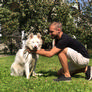 Pet Sitter in Wroclaw-Psie Pole, Dolnoslaskie, Poland looking for a job: 2826573