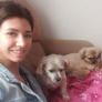 Pet Sitter in Bellambi, New South Wales, Australia looking for a job: 2861408