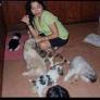 Pet Sitter en Manila, Manila, Filipinas buscando trabajo: 2867387