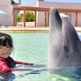 Babysitter in Guangzhou, Guangdong, China 2876047