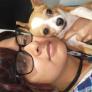 Pet Sitter en San Salvador, San Salvador, El Salvador buscando trabajo: 3111833